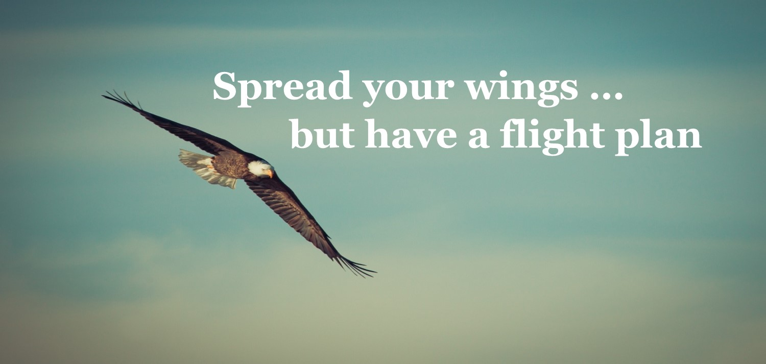 Soar with Your Christian Author Peers